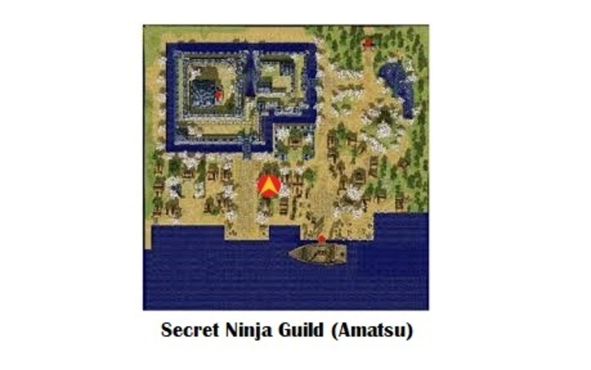 The Ninja Guild is secret, so you'll have to search for it.