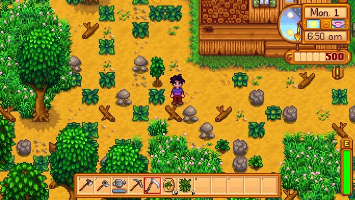 The character's farm when they first arrive.
