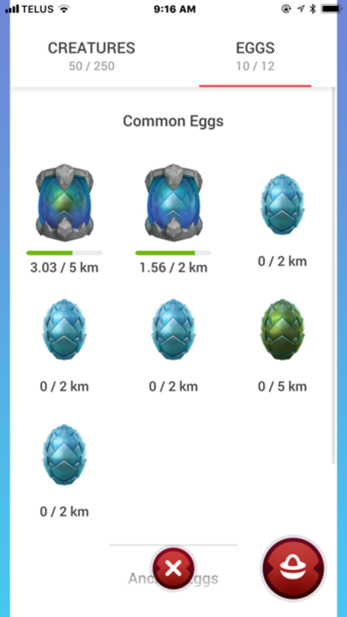 This view shows the progress of my egg hatching.