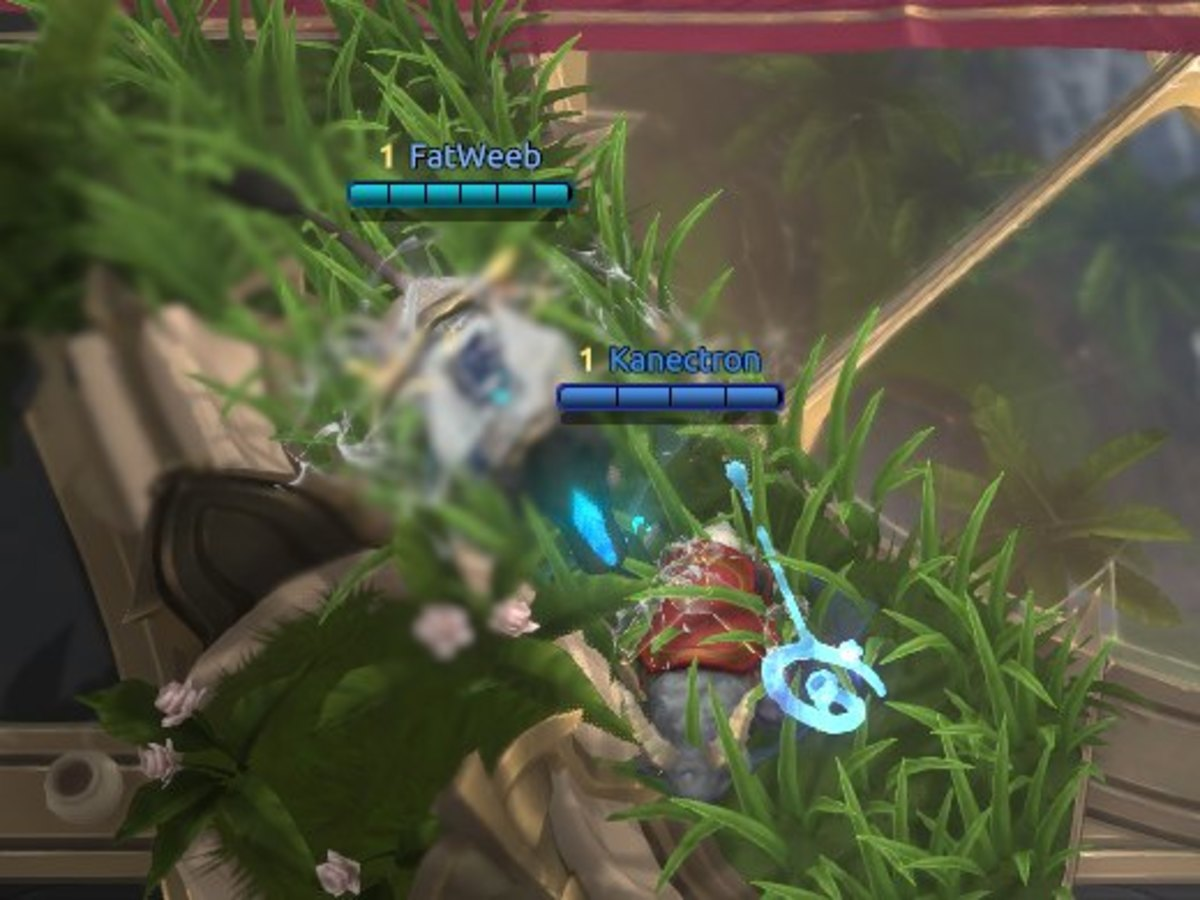 Brush will hide champions from sight, including the minimap.