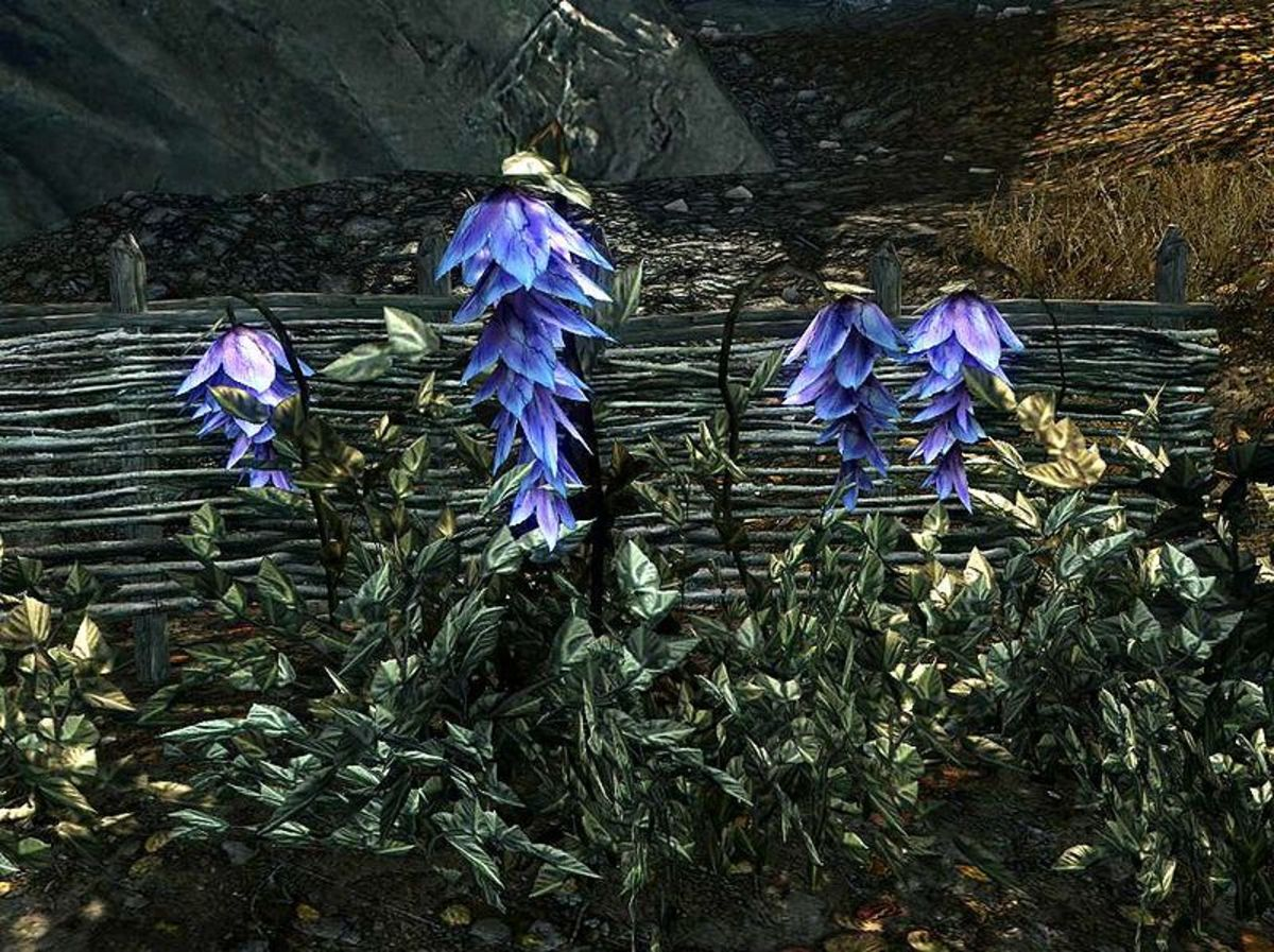 The Burial Customs and Death Practices of Tamriel:
