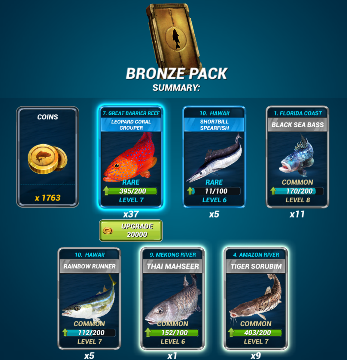 Example Bronze Pack