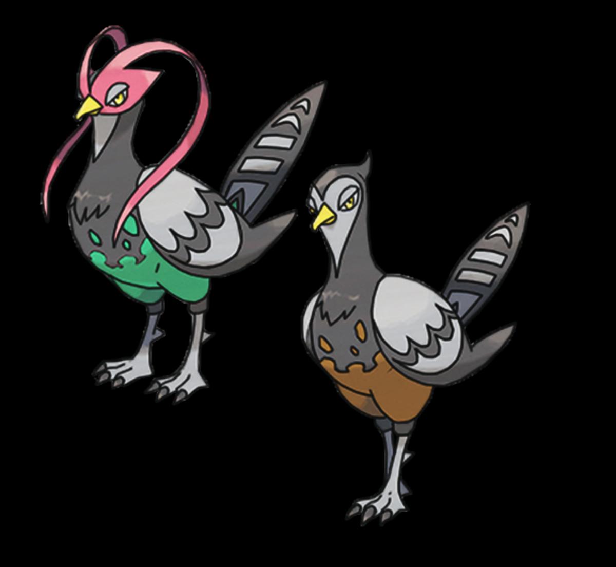 Unfezant male and female