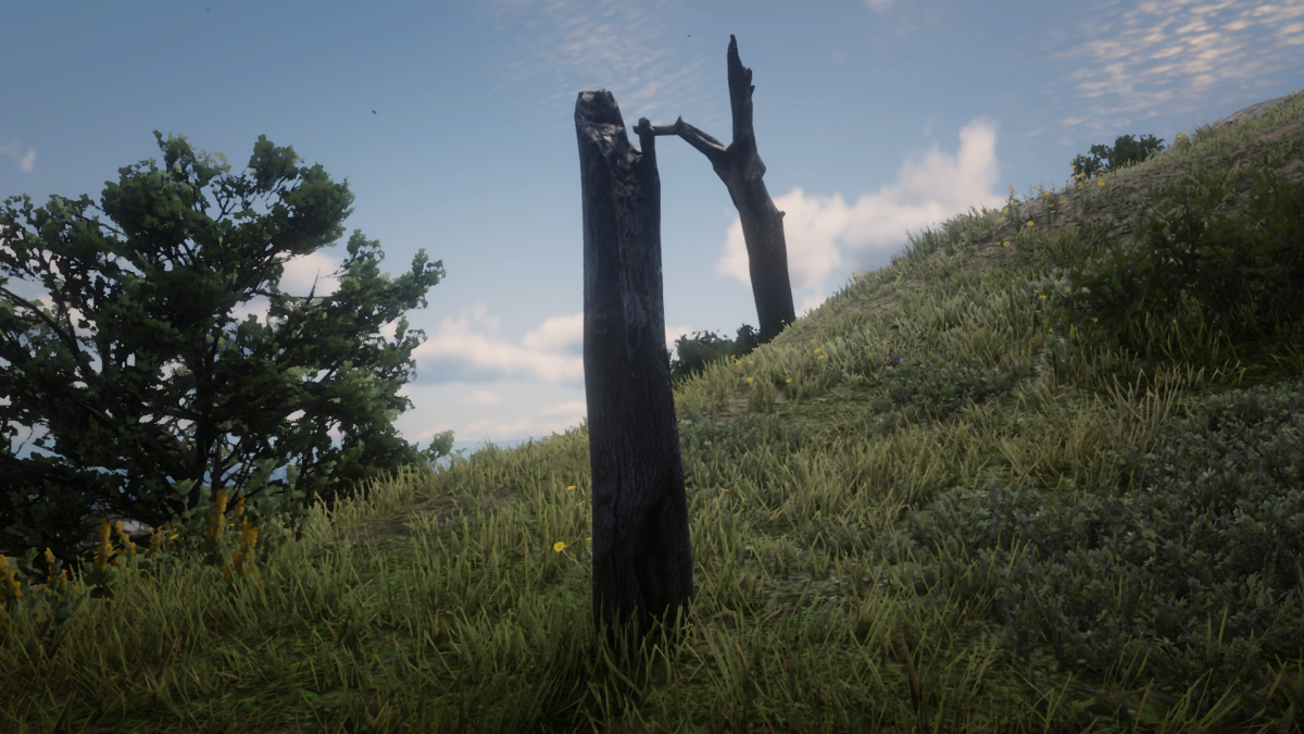 There's not THAT many dead tress on the other side of Face Rock so . . .