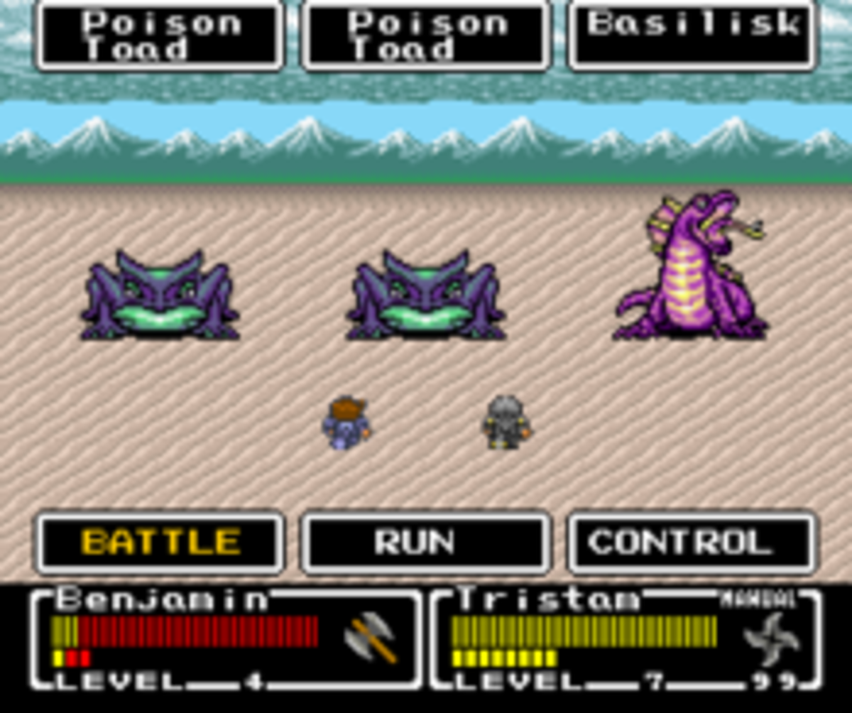 Photo of one of the game's many battles
