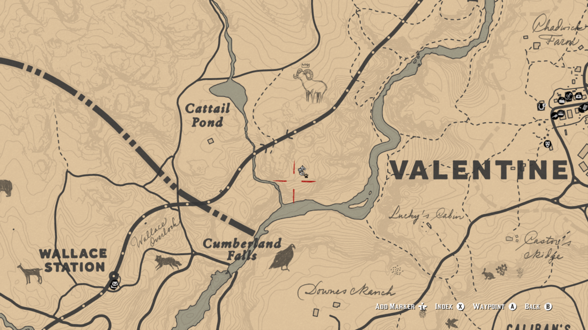 You can find a couple of Grizzlies up in this area, North-East of Wallace Station, near Cumberland Falls. And yeah that paw icon is a dead Bear. It wasn't a complicated story . . .