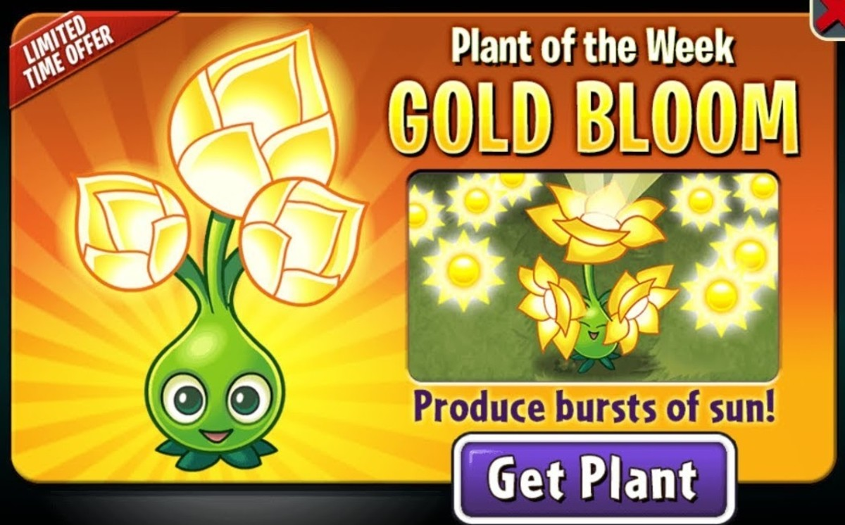 Gold Bloom