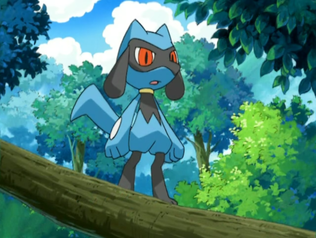 Riolu in the anime