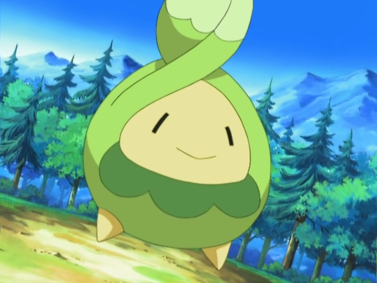 Budew in the anime