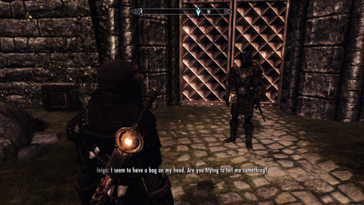 My old screenshot of my khajiit thief and Inigo in Solitude.