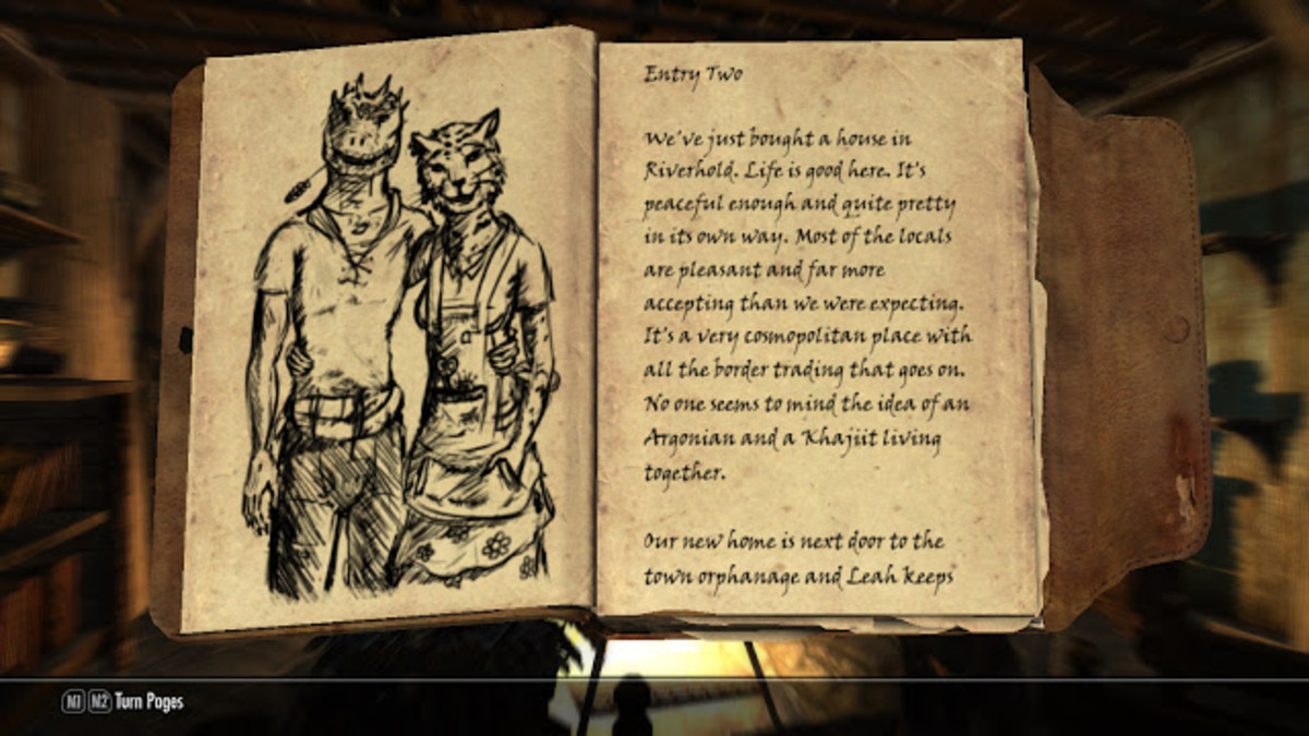 My screenshot of one of the books from Inigo's quest.
