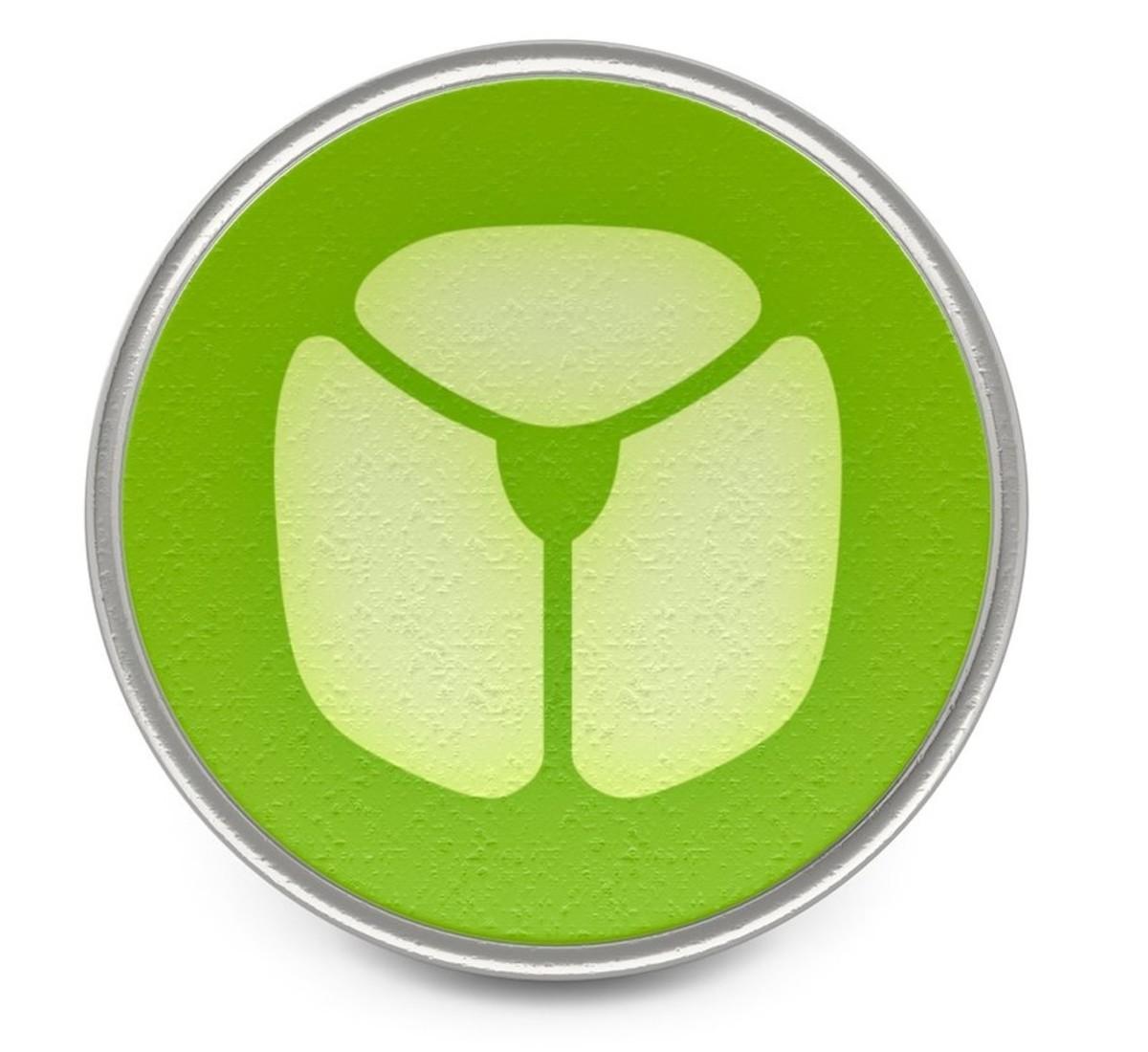 Bug Pokémon logo