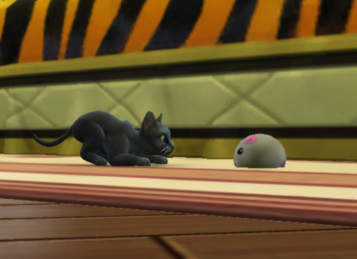 It is adorable watching Sim pets play, especially puppies or kittens.