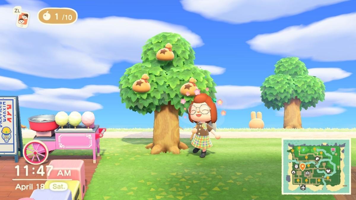 Money tree in Animal Crossing: New Horizons