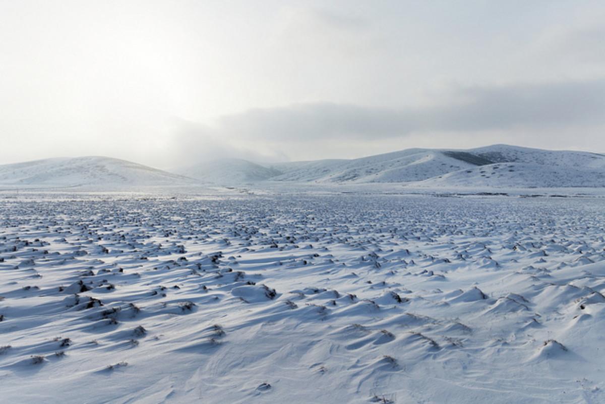 a-winters-walk