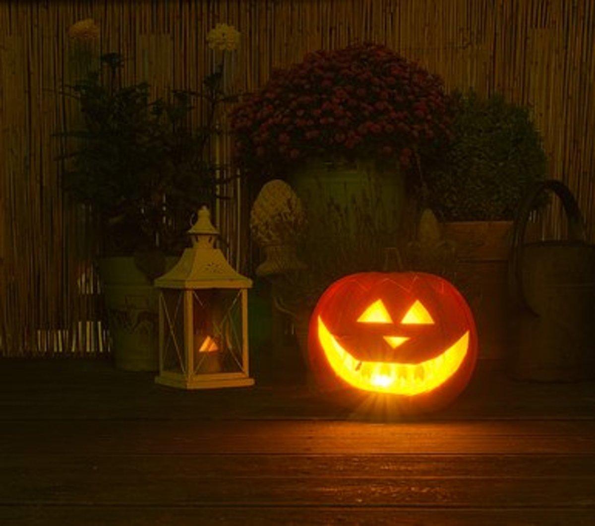Is It Halloween or Is It Christmas? Is It Christmas or Is It Halloween?