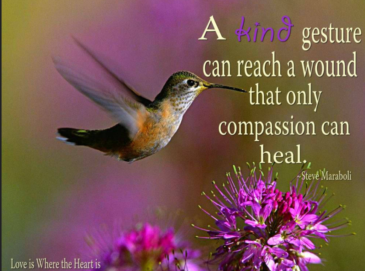 If you're depleted physically, emotionally, or spiritually, you have no compassion to give.