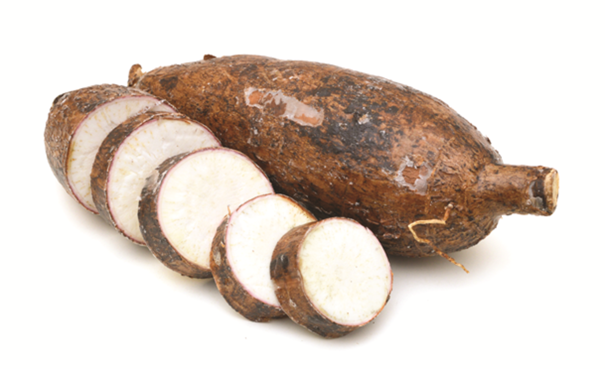 Trying to Conceive: Cassava, Fertility, and Twins