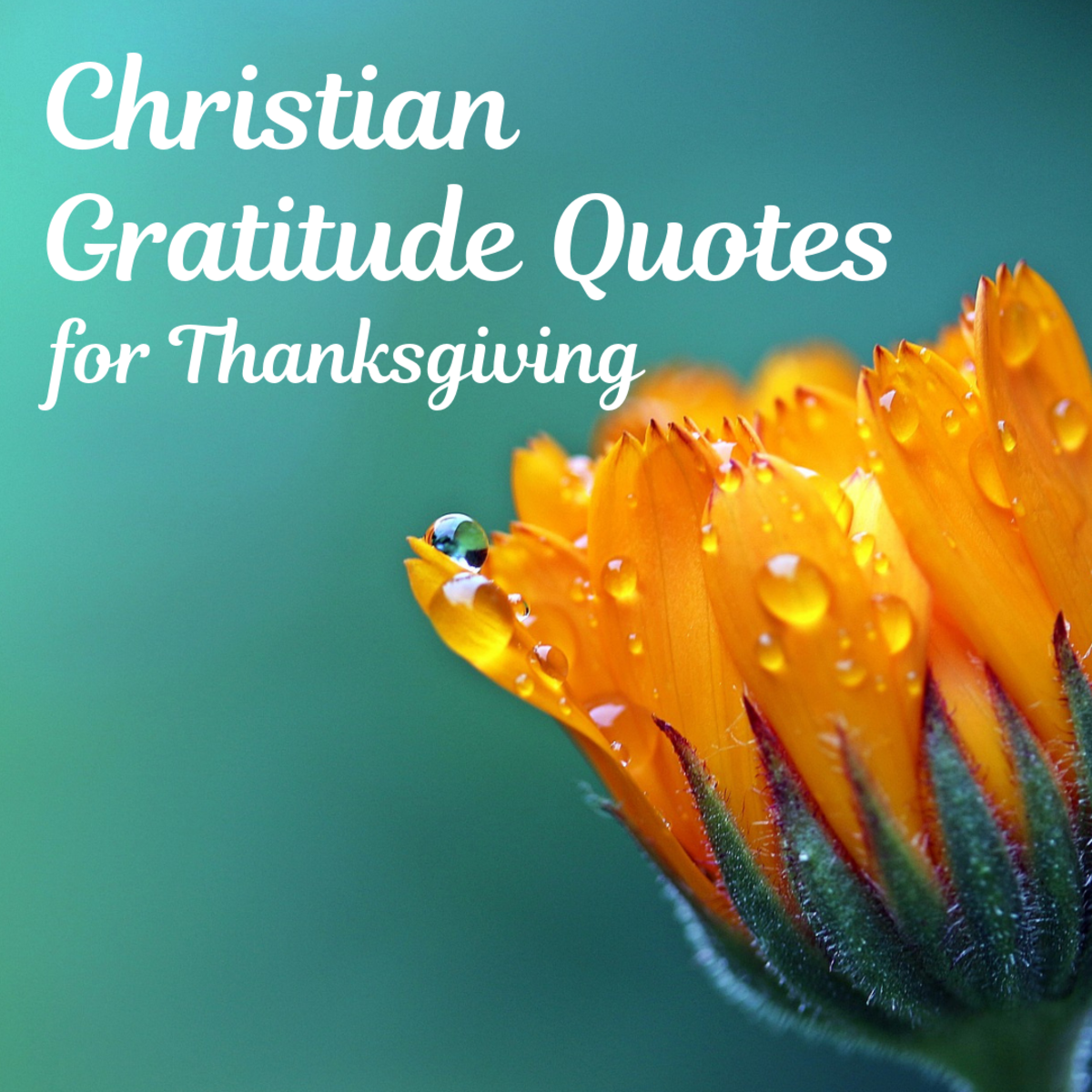 Christian Quotations for Thanksgiving From Newspaper Archives