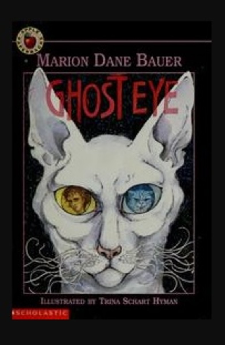 """Ghost Eye"" Book Cover 