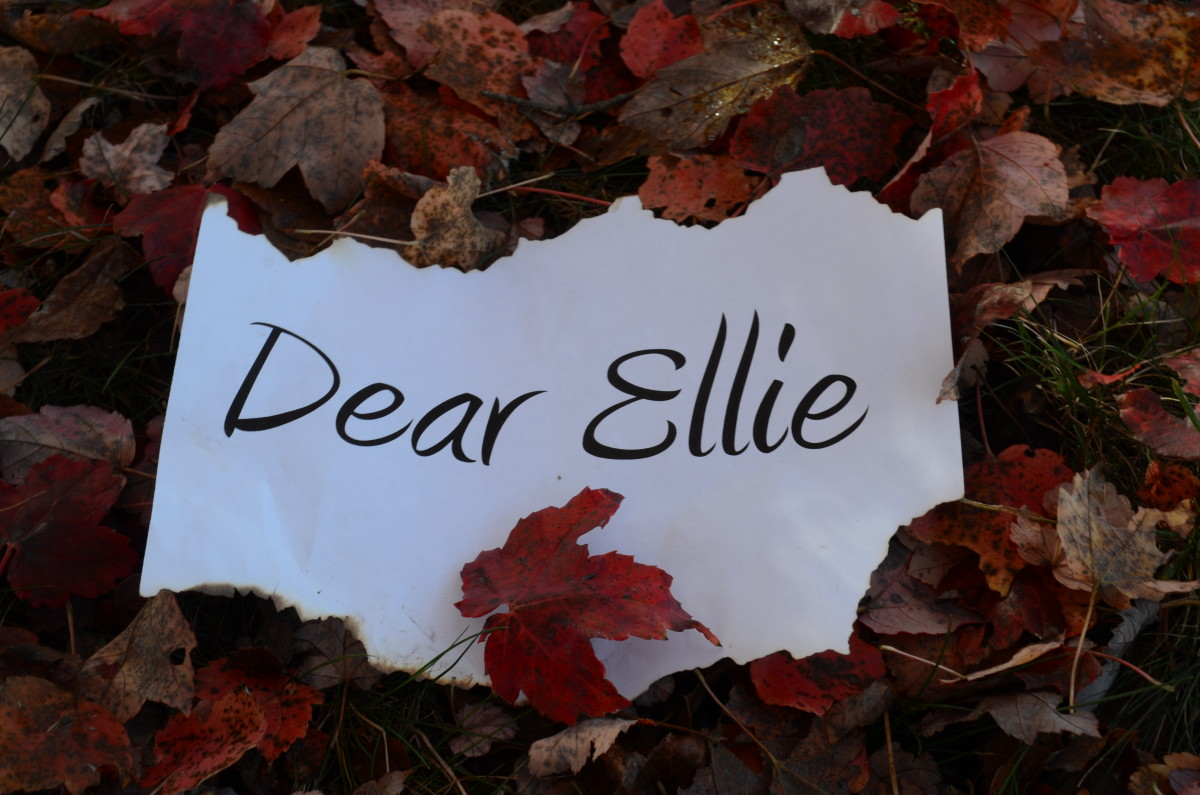 Dear Ellie - Part 25