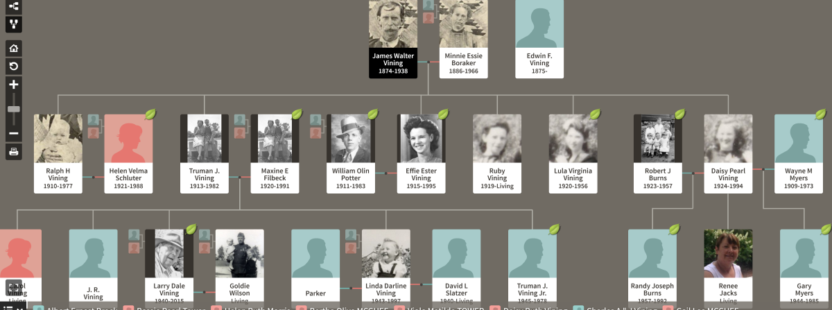 A screen shot of some of my ancestors from the Ancestry.com site.