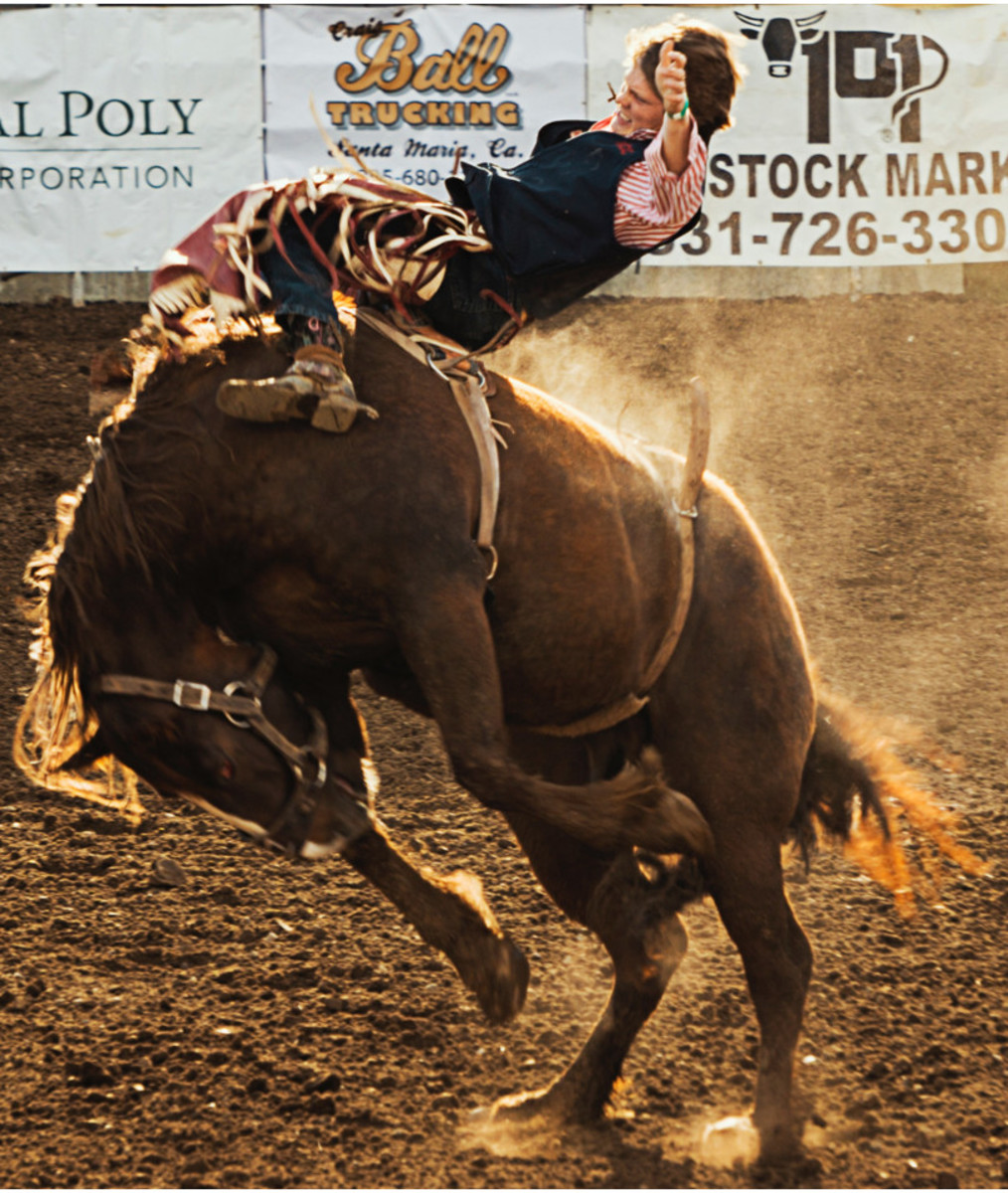 Bucking Horse: What to Do?
