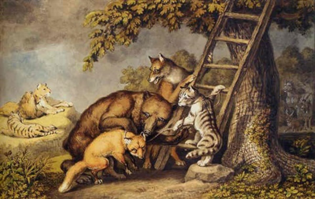 The cat, The Fox and The Lion