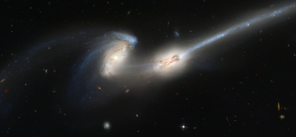 The Mystery Within Dark Galaxies