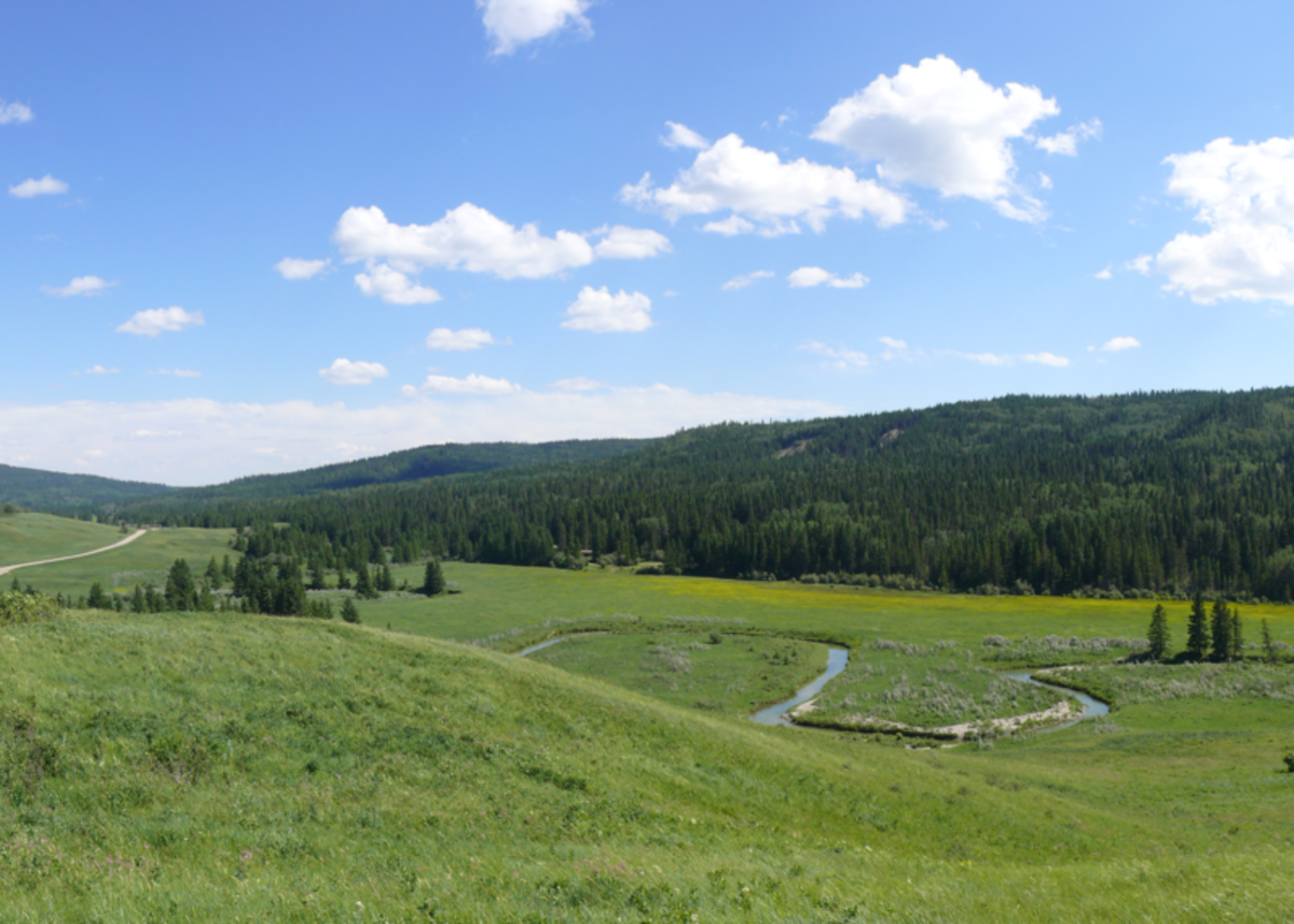 Site of the Cypress Hills Massacre.