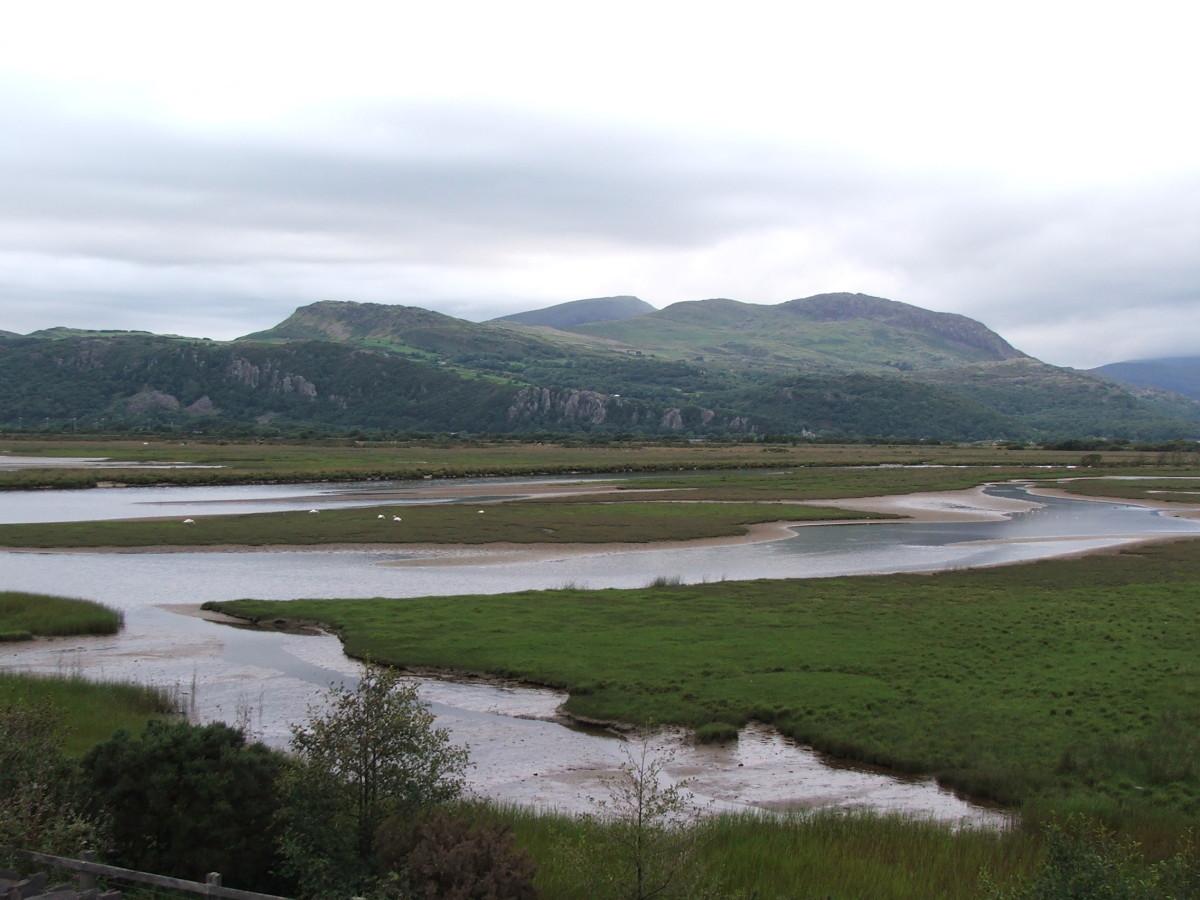 The hills near Porthmadog, Wales