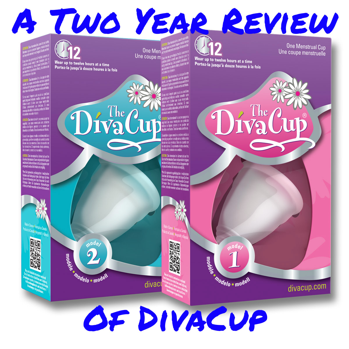 A Two-Year Review of DivaCup