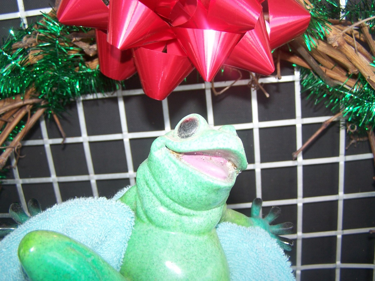 A Froggy Christmas