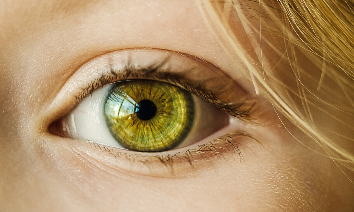 A healthy eye with efficient drainage of fluid is important for vision.