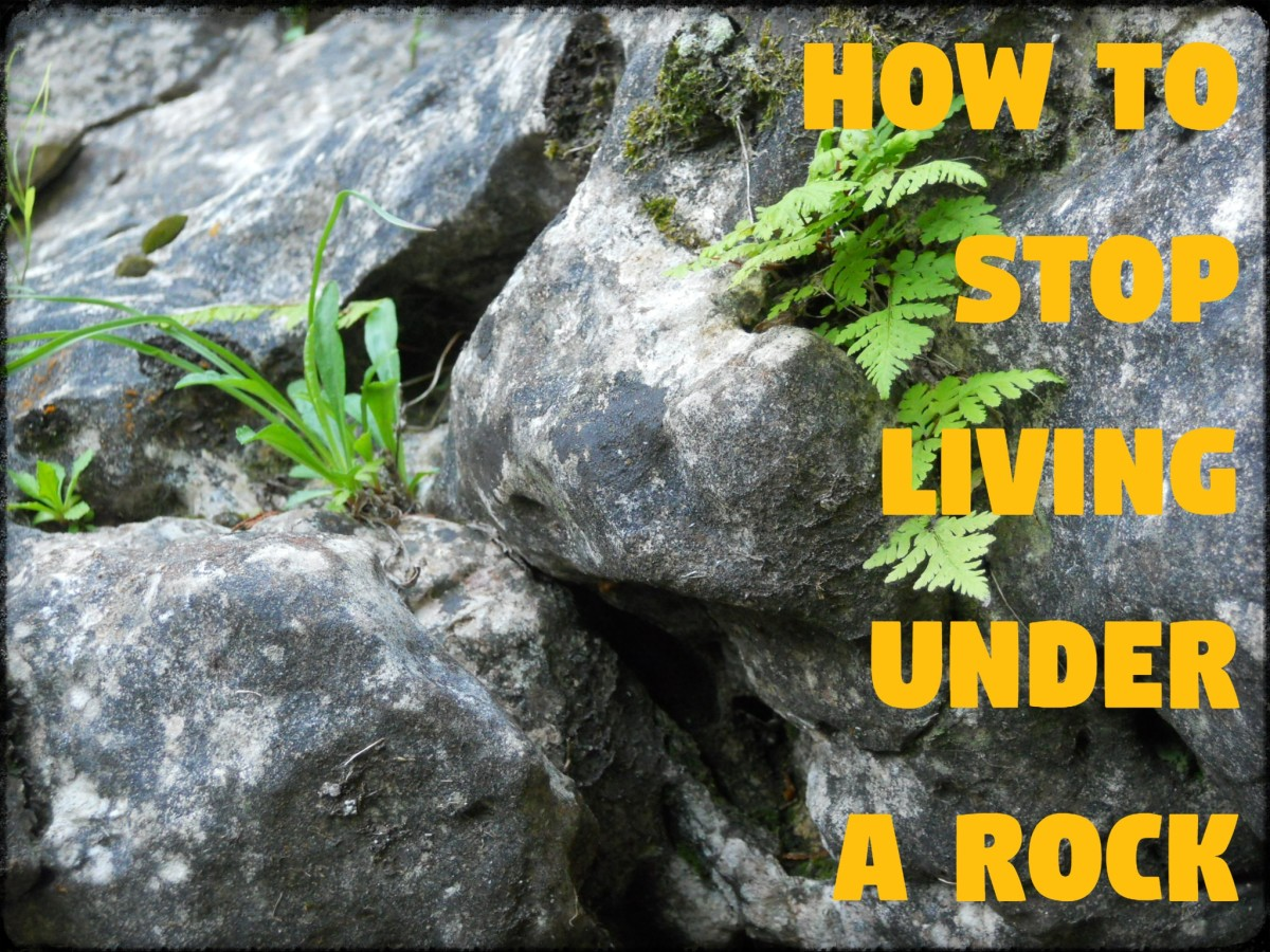 How to Stop Living Under a Rock