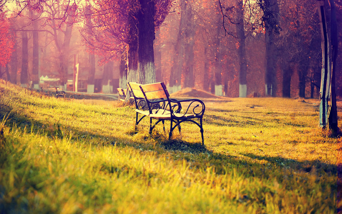 live-in-my-memories