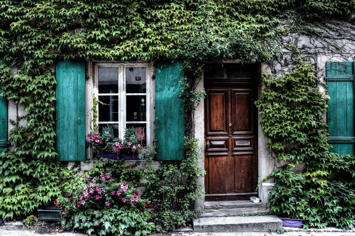 how-to-find-a-house-to-rent