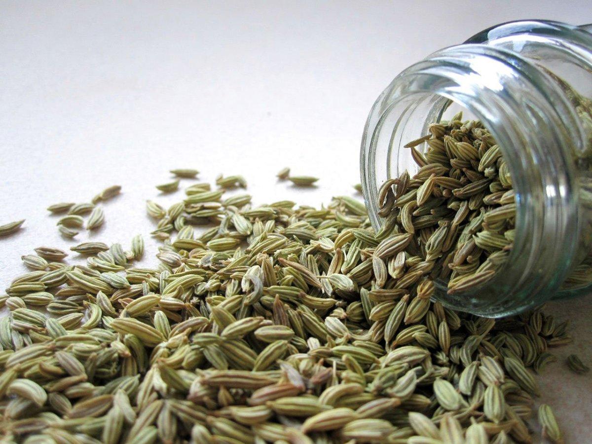 make-fennel-tea-using-seeds