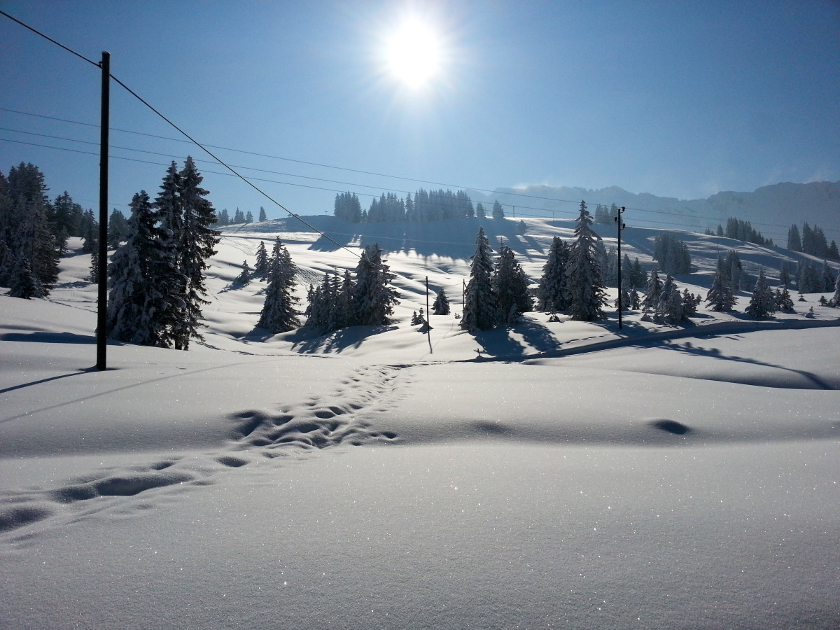 Skiing to Zero: A Zen Approach to Cross-Country Skiing