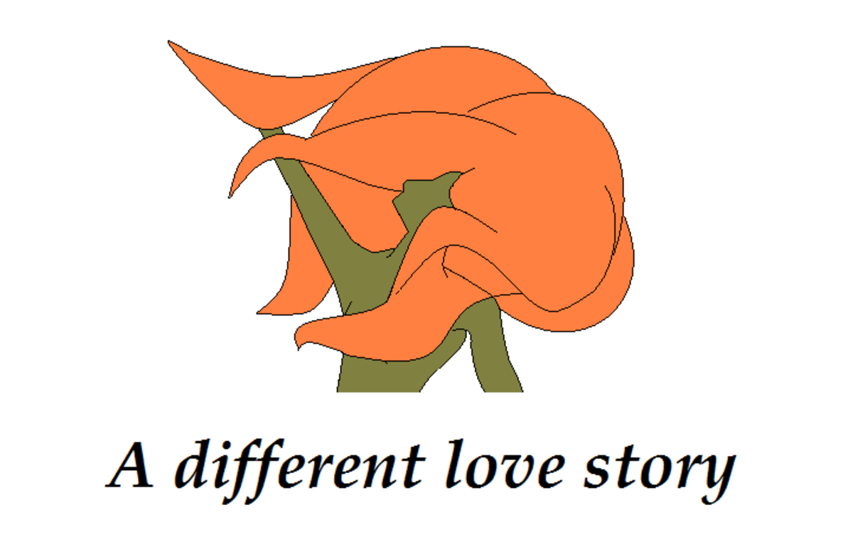 A Different Love Story