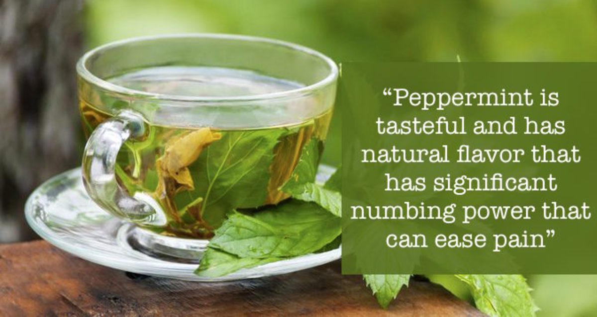 Peppermint has significant numbing power that can ease pain.