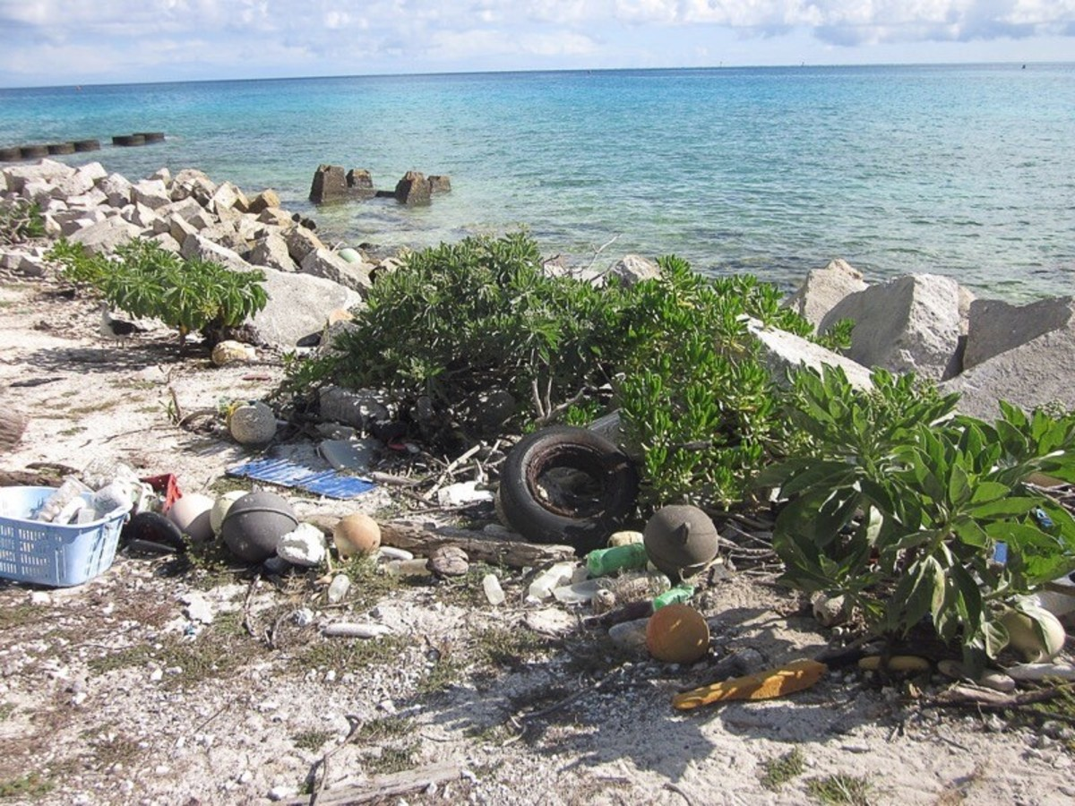 Plastic waste on Midway Atoll, Northwestern Hawaiian Islands