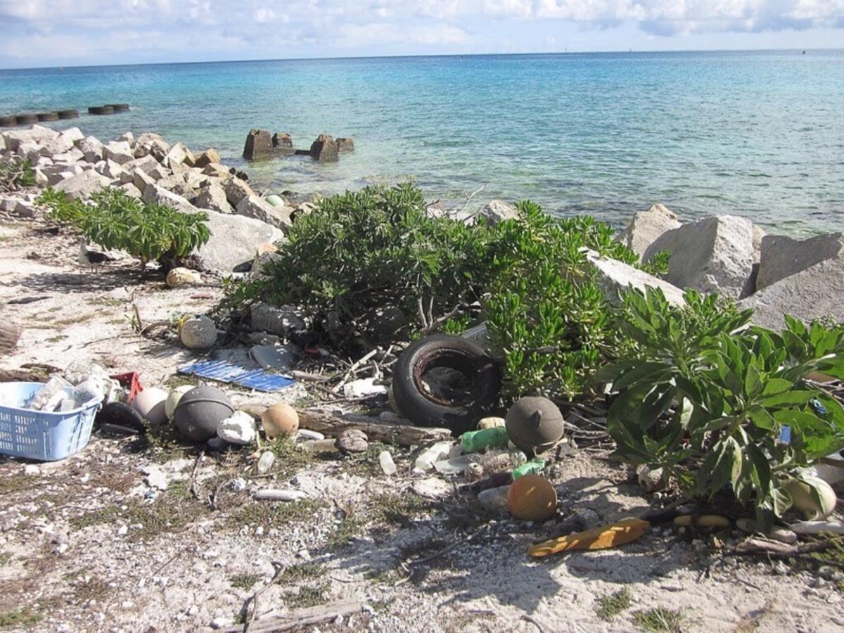 Plastic waste on Midway Atoll, Northwestern Hawaiian Islands
