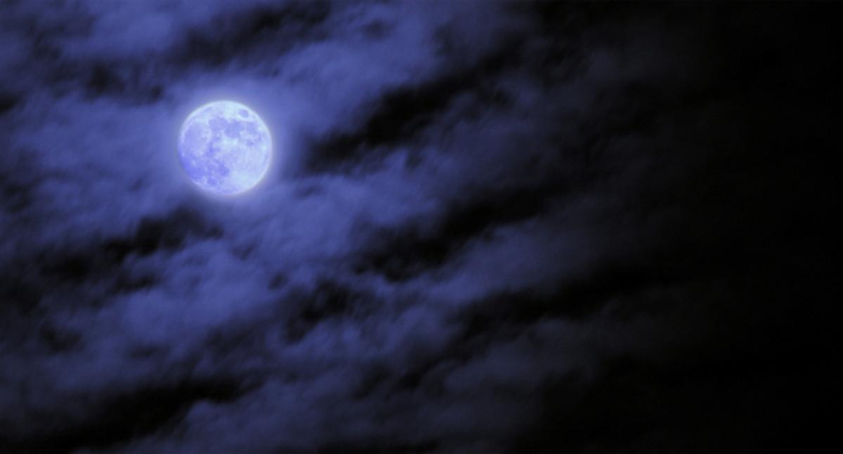 Creator's Nightlight