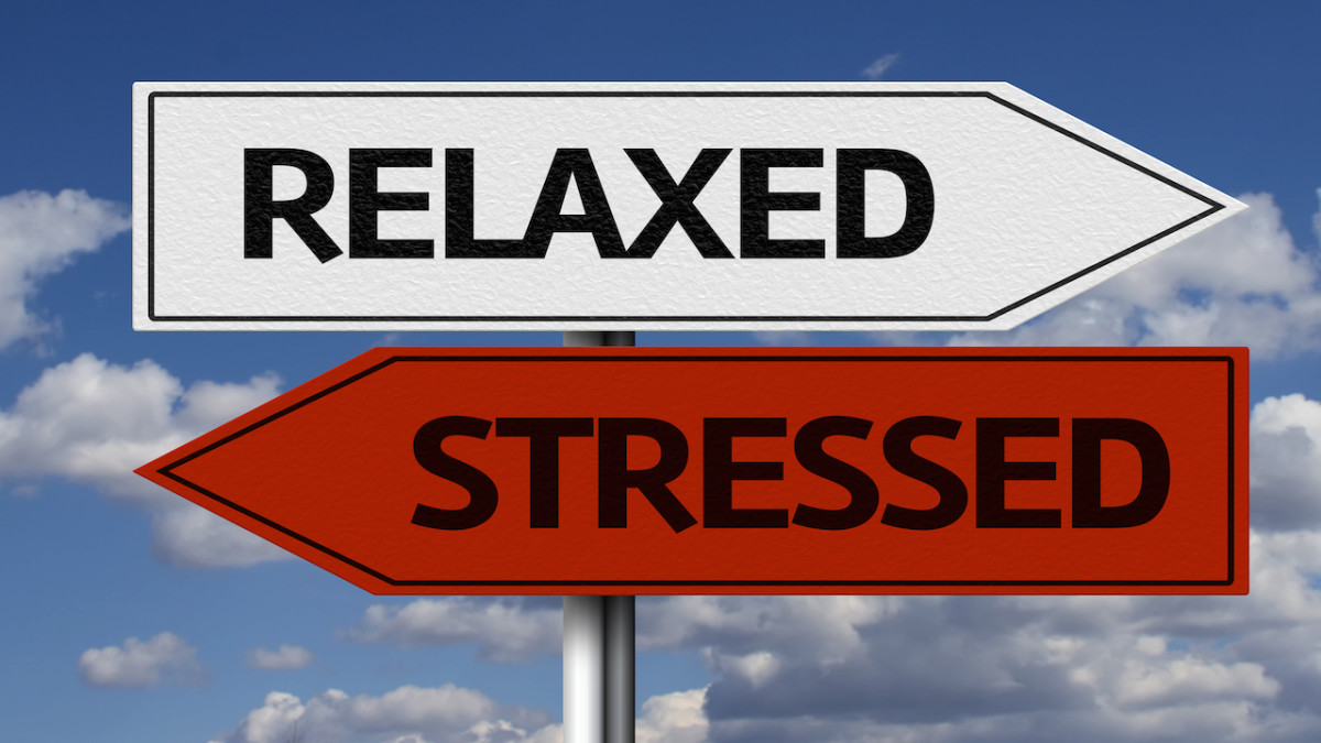 Four Easy Ways to Live Stress-Free