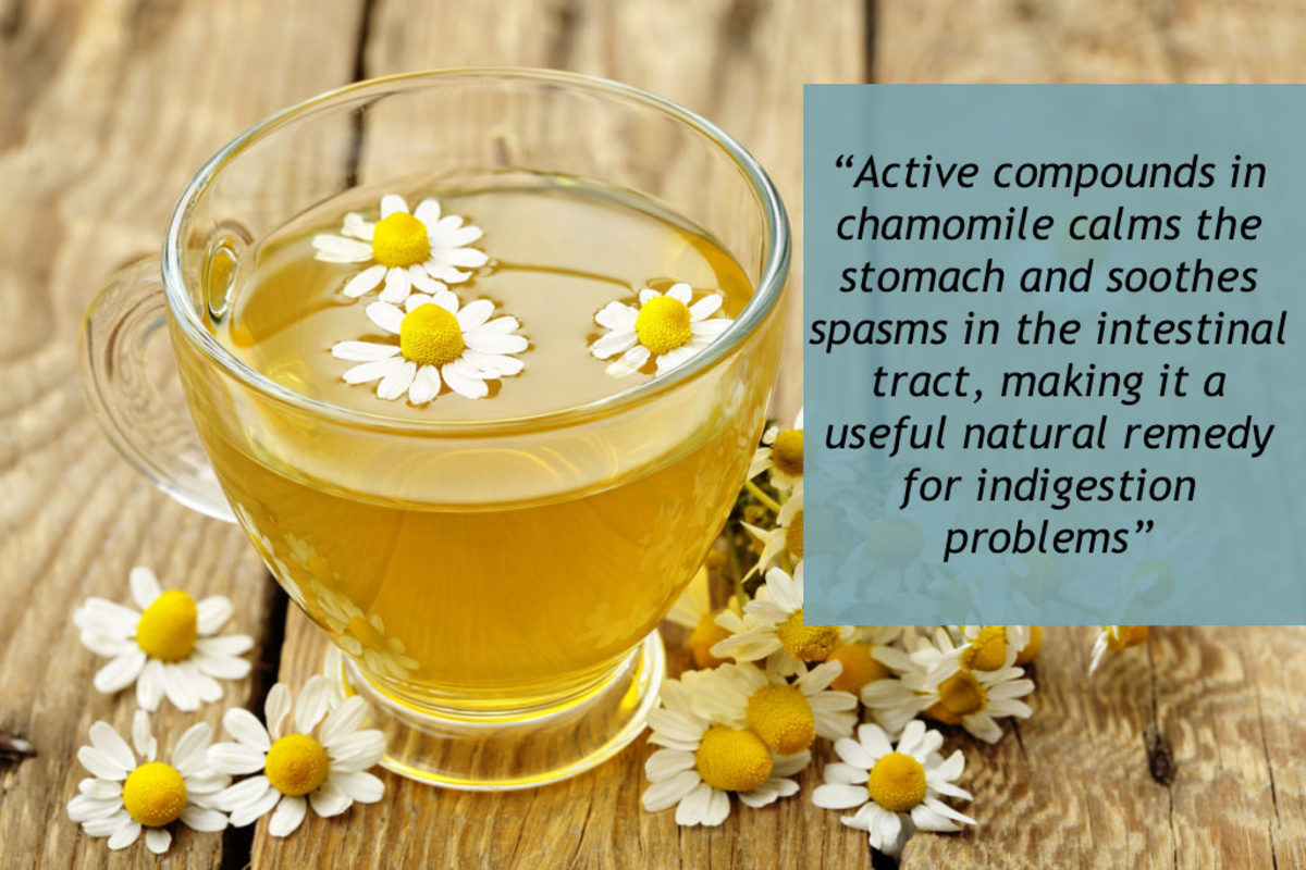 Chamomile calms the stomach and soothes spasms in the intestinal tract.
