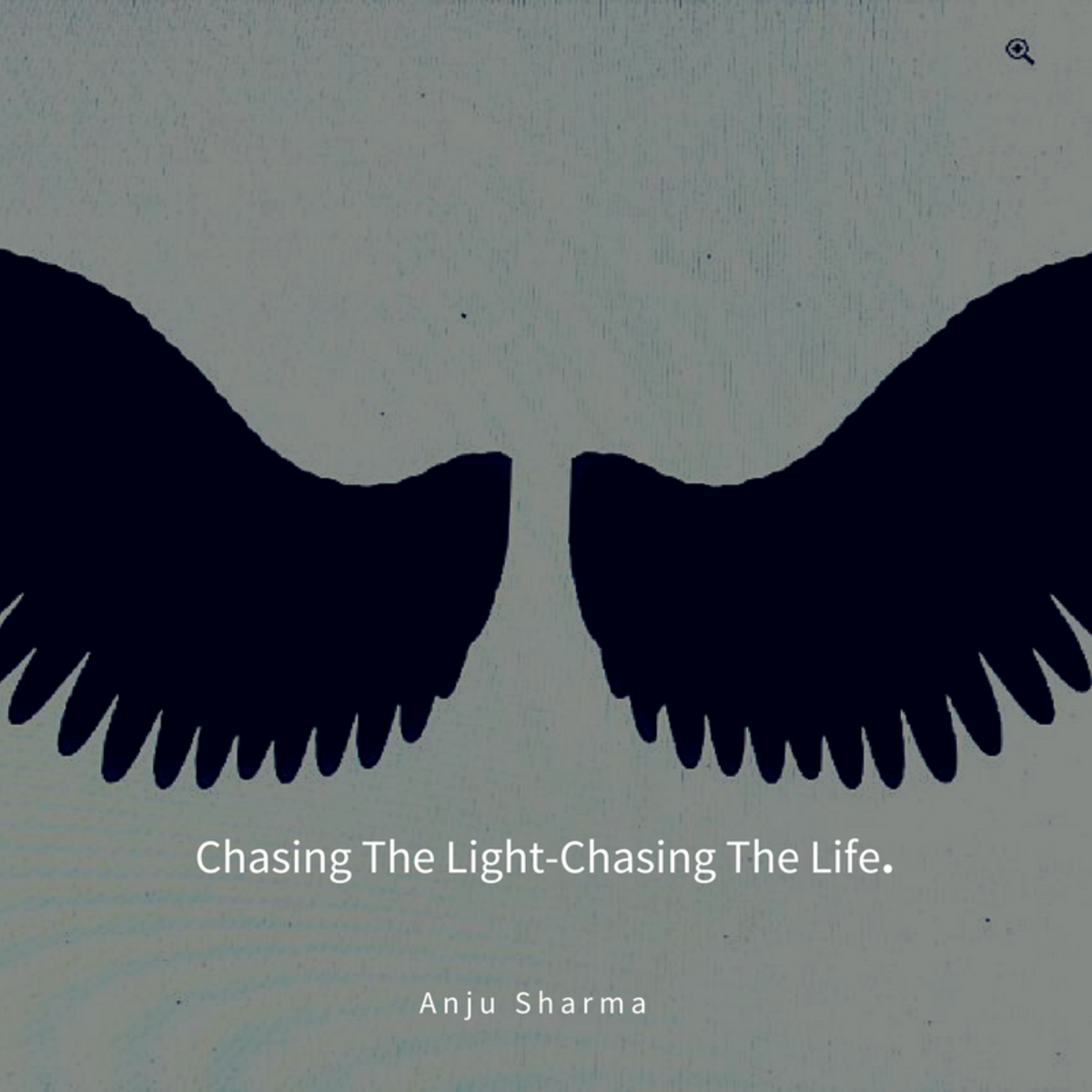 Chasing The Light-Chasing The Life.