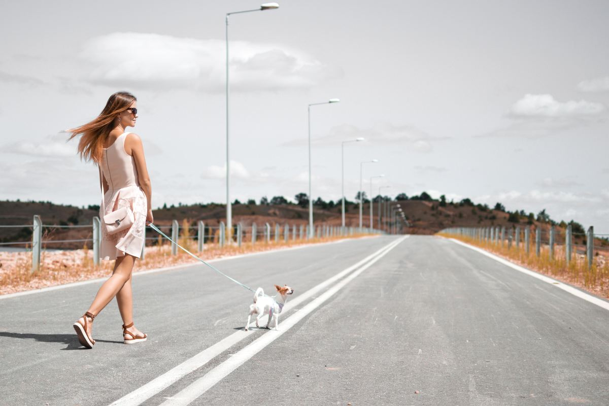 8 Surprising Reasons Why You Should Walk Your Dog