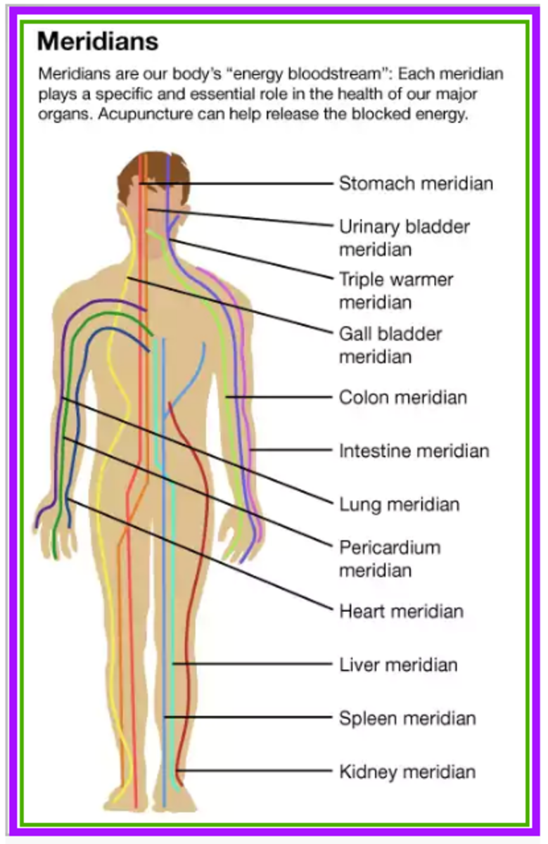 The meridian paths of Qi (life-force).
