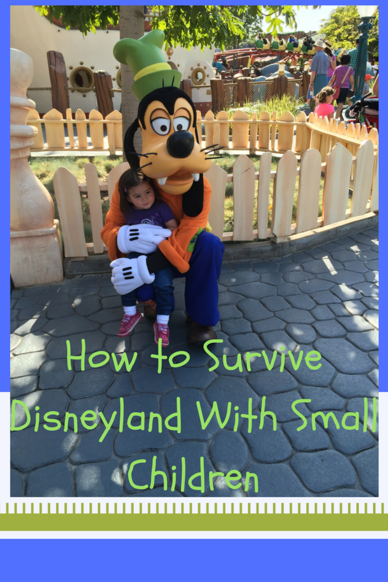 How to Survive Disneyland With Small Children